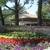 Acacia Capital Cor-Ironwood AP