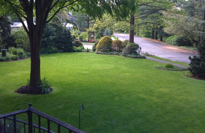 E-Z Tree Service - South Jersey - Cherry Hill, NJ