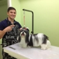 Mario's Pet Grooming & Boutique - Fort Lauderdale, FL