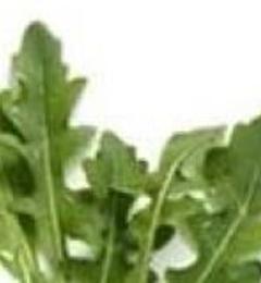 Farmer Dell Organic & Aquaponic Greenhouse - Mineral Wells, TX