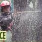 D J's Tree Service & Logging Inc - Colchester, VT