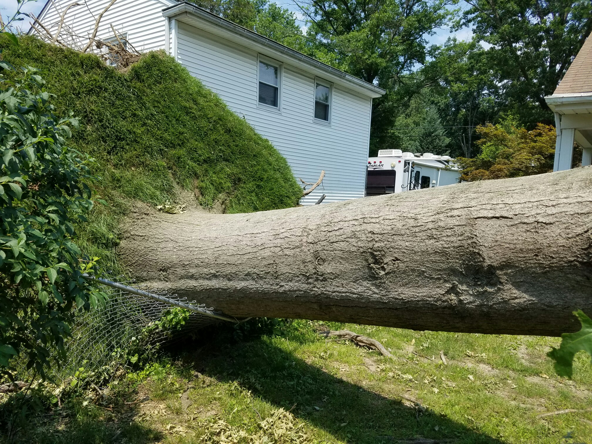 big timber tree service llc 305 hopewell rd marlton nj 08053 yp com