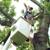 Gray's Tree Service