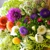 America's Florist Always Fresh Flowers