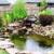 Aquatic Gardens Custom Services