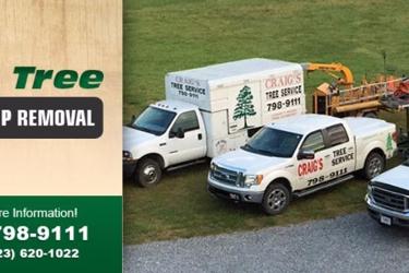 Craig's Tree Service & Stump Removal