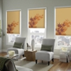 Blinds To Go Commercial & Residential