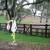 Storks & More