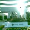 Berman Financial Services Inc