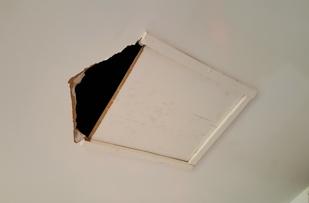 Ceiling damage.