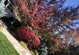 Longhorn Landscaping LLC - Sparks, NV