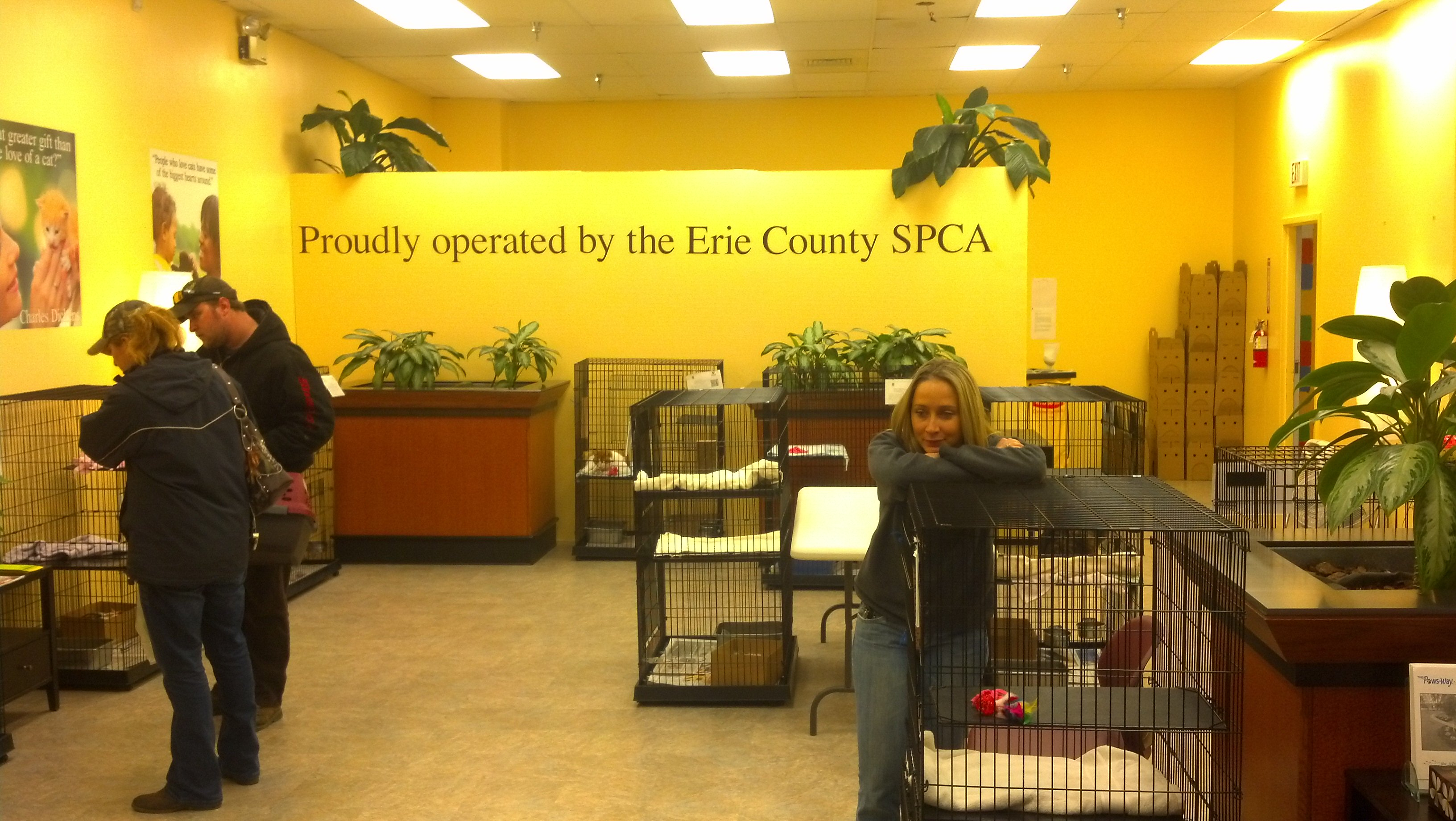 County Spca Erie 4545 Transit Rd Ste 850, Buffalo, NY 14221
