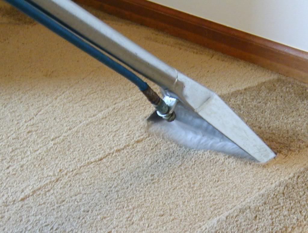 carpet cleaning kissimmee kissimmee fl 34741 yp com