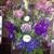 Bartlett Flowers & Gifts