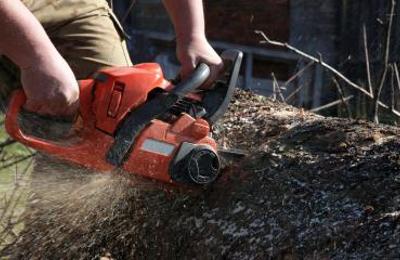 Hinson Tree Service - Concord, NC