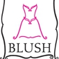 Blush Bridal Boutique - Gainesville, VA