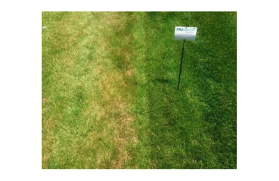 TruGreen Lawn Care - Waterford, MI