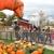 Goebbert's Pumpkin Patch