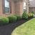 Allen Lawn Service