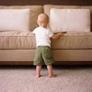 GREEN CLEANING Carpets-Manhattan Beach - Manhattan Beach, CA
