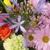 Heaven & Earth Floral Inc