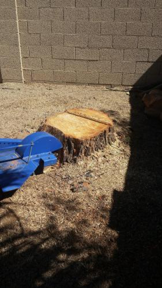 TDR Tree Services - Mesa, AZ. Removing a stump after taking down a tree here in Mesa