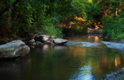 Turtle Creek Association - Dallas, TX
