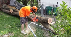 CMS Tree Services - Palm Bay, FL