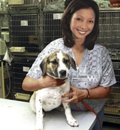 Town & Country Veterinary Clinic - Oviedo, FL