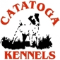 Catatoga Kennels - Knoxville, TN