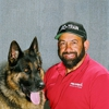 Pro-Train - Service Dog Training