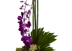 Cindy's Floral Shop - Littleton, CO
