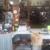 Sunshine Resale Store