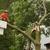 Arbor Tech Tree Care