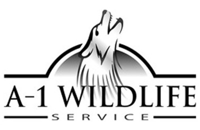 A-1 Wildlife Services