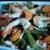Coolgreens - North May