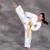 Duarte Shotokan Karate & Martial Arts Academy