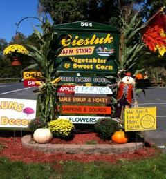 Ciesluk Farmstand - Deerfield, MA