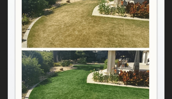 2 Green Guys Lawn Painting Service - Boca Raton, FL