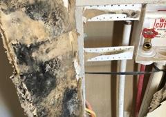 White Mountain Restoration - Show Low, AZ. Photo during mold remediation project (washing machine leak)