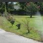 Free Flow Irrigation & Landscape