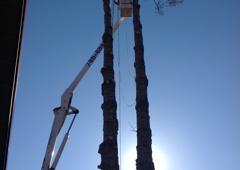 Timber Tree Service - Palmer, AK