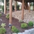Complete Creations Landscaping