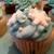 Uptown Cupcake, LLC
