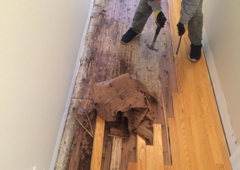Water Damage Experts - Fairfield, CT