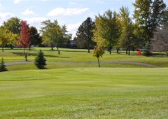 Clio Country Club - Clio, MI
