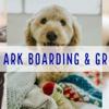 Noah's Ark Boarding & Grooming
