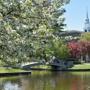 Wheaton College (Massachusetts)