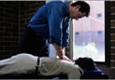 Acupuncture & Chiropractic Excellence - Kirkland, WA
