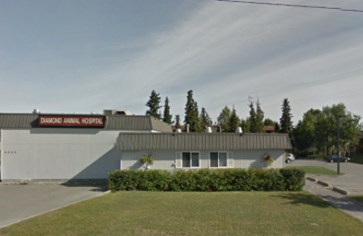 Diamond Animal Hospital + Emergency Services - Anchorage, AK